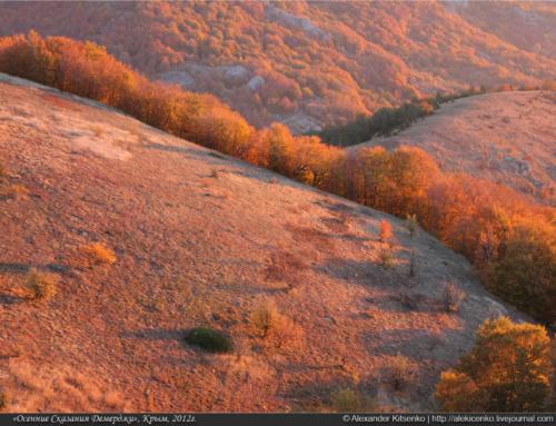 «Осенние сказания Демерджи — 2012». Часть первая…
